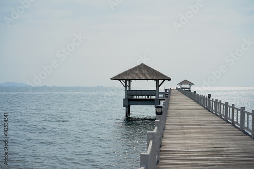 walkway to the ocean with the small pavilion - 142534541