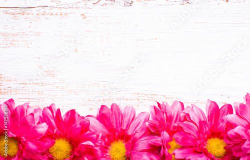 Fotobehang Gerbera Gerbera flowers, spring background for women's day or card for mothers day