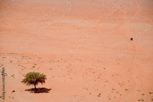 Poster Desert de Wadi Rum