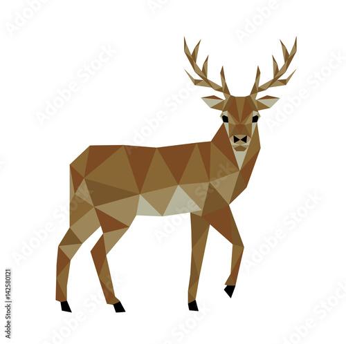 Polygonal deer - 142580121