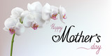 Happy Mothers Day greeting background with flower. Horizontal vector illustration.