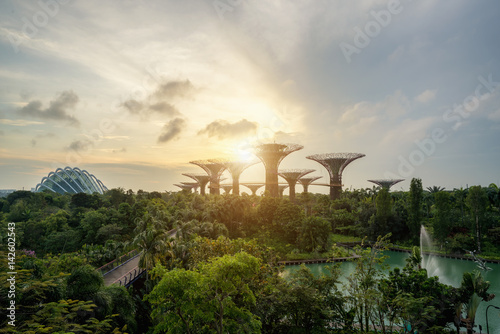 Poster Singapore Supertrees in garden by the bay in moring at Bay South Singapore