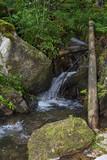 Waterfall on mountain river in Carpathian Mountains , Romania
