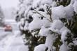 Winter, Canada,  Snow