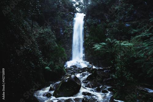 Erskine Falls. - 142758919