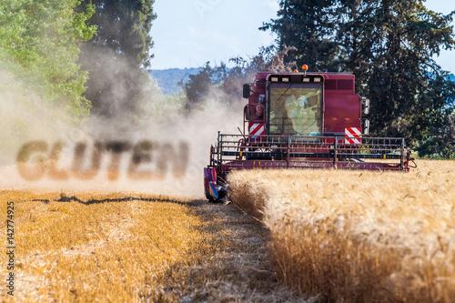 Poster gluten et moissonneuse batteuse récoltant le blé