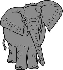elefant süß niedlich groß gesicht gemalt