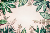 Creative nature frame made of tropical  palm and fern leaves on pastel background, top view
