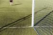Quadro Football game grass