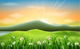 Mountain landscape background with daisies flower