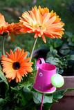 Gerbera-Blumen mit Gießkannen-Deko