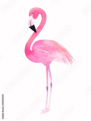 Akwarela różowy flaming. Ilustracji wektorowych