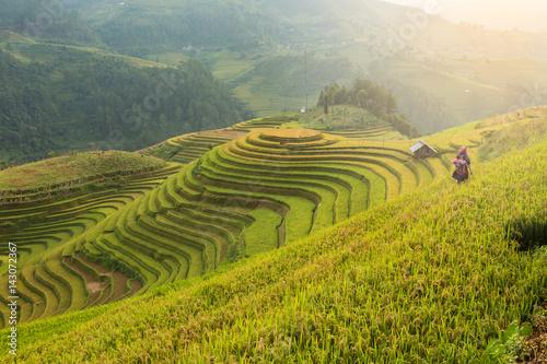 Fotobehang Rijstvelden Rice terraces field landscapes beautiful of Mu Cang Chai Yen Bai Vietnam.