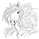 Horse portrait. Horse head with flowers. Black lines on a white background.
