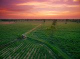 abstract dramatic aerial view countryside landscape at sunset.