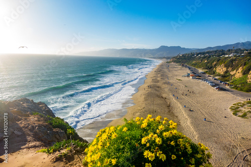 Point Dume in Full Bloom