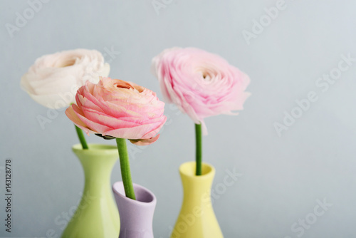 Persian buttercup flowers