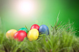 Easter colored eggs in the grass