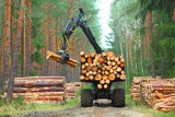 The harvester working in a forest. Harvest of timber. Firewood as a renewable energy source. Agriculture and forestry theme.  - 143157324