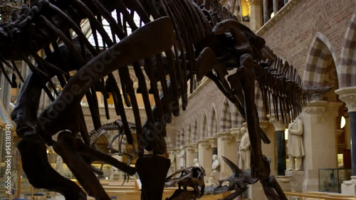 View of interior architecture & dinosaur exhibits in Natural History museum