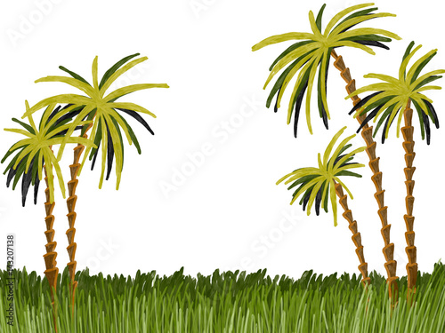 Hand drawn colorful palms in the grass on the white background, isolated illustration painted by oil color, high quality © Iryna
