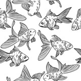 Vector seamless pattern with image of a fishes. Goldfish and perch. Linear fish for coloring books. - 143207512