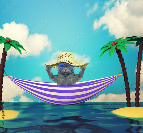 Poster Cute cat in glasses relaxing on the beach
