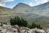 Amazing panorama to Spano pole, Pirin Mountain, Bulgaria