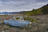 Old abandoned wooden boat wreck with peeling blue paint on the shore