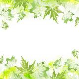 Spring leaves background - 143266943