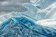 Iceberg with Gull, Newfoundland, Canada