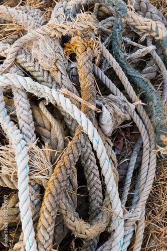 Poster 海岸に落ちていた古いロープ