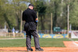 Plate umpire on baseball field, copy space
