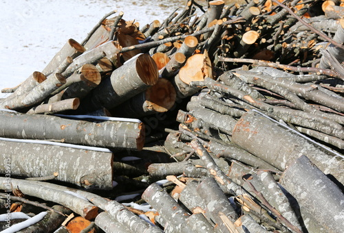 logs of wood in the woodshed outdoors with snow Poster