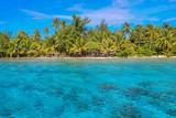 Tropical beach with palm trees and blue lagoon on sunny day. Bora Bora, French Polynesia. - 143364997
