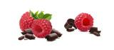 Raspberry chocolate curls horizontal isolated