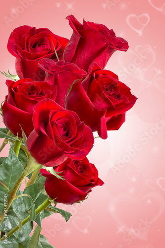 Foto Murales Image with red roses.