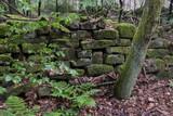 Lesesteinmauer