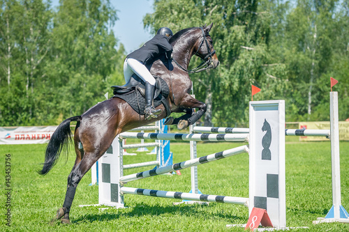 Poster The rider on the bay show jumper horse overcome high obstacles in the arena for