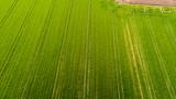 Natura e paesaggio: vista aerea di un campo, campo arato, coltivazione, prato verde, campagna, agricoltura
