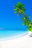 Dreamscape Escape On Maldives - 143473323