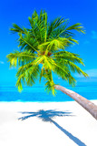Dreamscape Escape On Maldives - 143474322