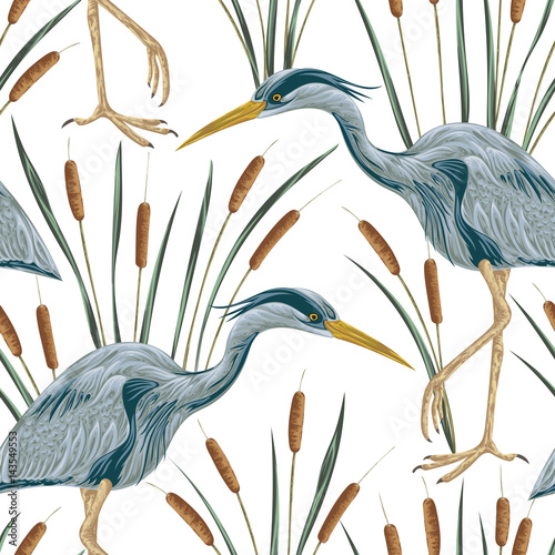 Seamless pattern with heron bird and bulrush. Swamp flora and fauna. Vintage hand drawn vector illustration in watercolor style - 143549553