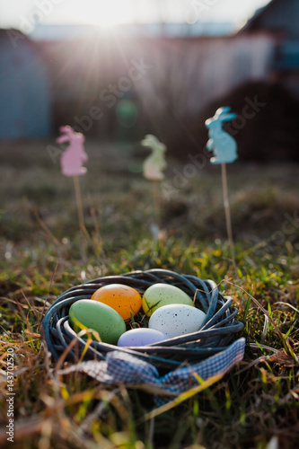 Easter eggs and bunnies in grass