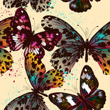 Butterfly vector design pattern with colorful wings