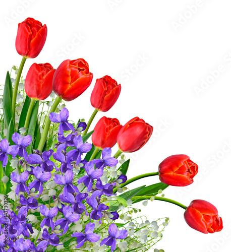 Fotobehang Lelietjes van dalen spring flowers snowdrops isolated on white background.