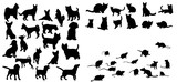 Illustration, vector, silhouette of cats dog and mouse set - 143755152