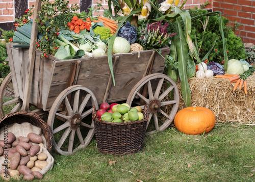 Erntedankfest oder Herbstmarkt - Alter Leiterwagen mit Gemüse dekoriert