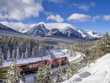 Train rumbling around Morant's Curve in Banff National Park.