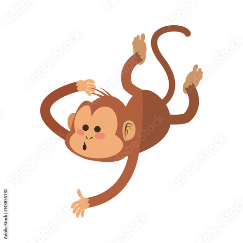 Fototapeta monkey cartoon icon over white background. colorful design. vector illustration